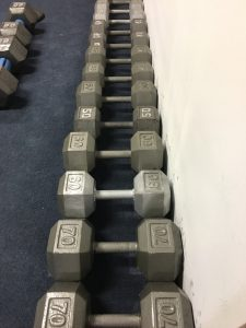 Dumb bells Increasing in weight