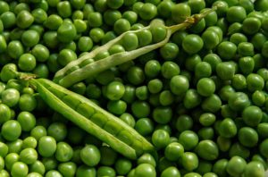 Peas are a Common Vegan Protein Source
